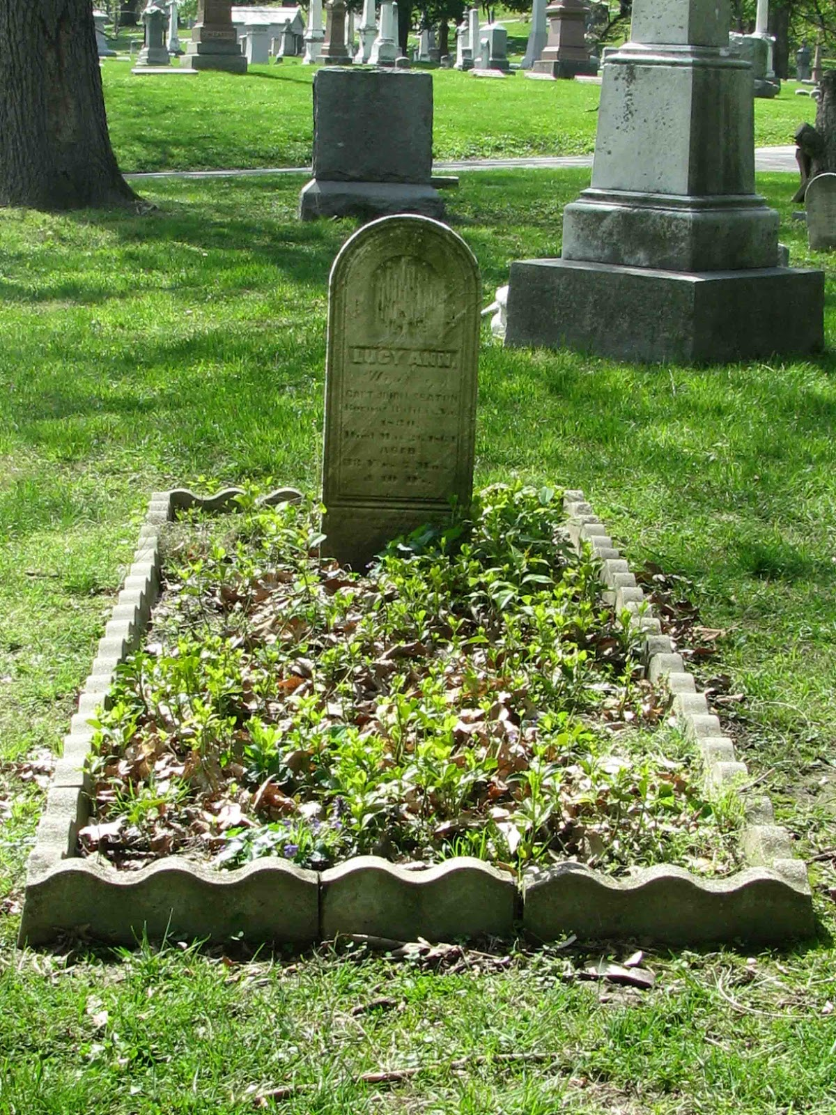 A Grave Interest: Serene and Evergreen - Cemeteries Allowing Plants ...