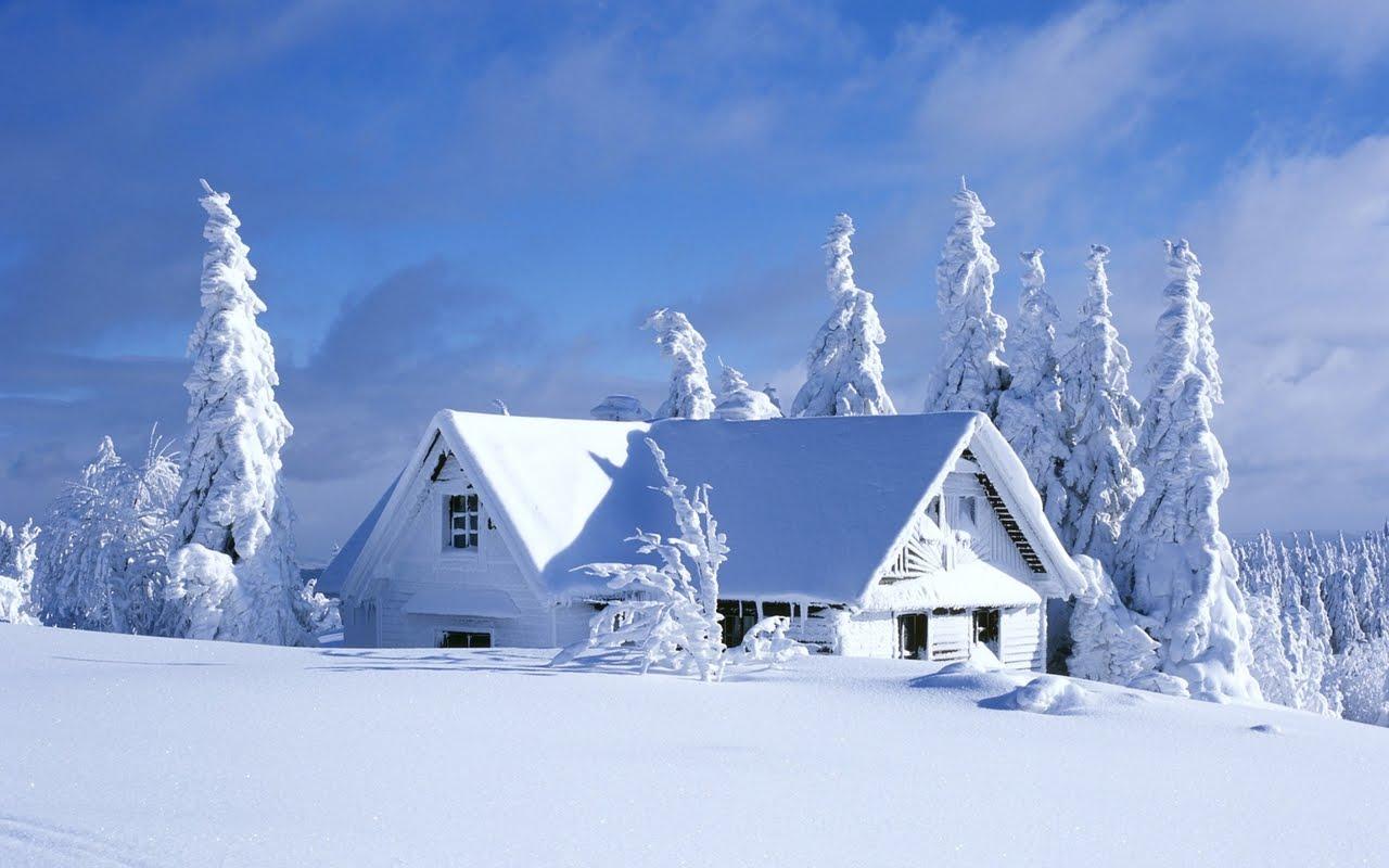 Imagini de Iarna - Cabane la Munte