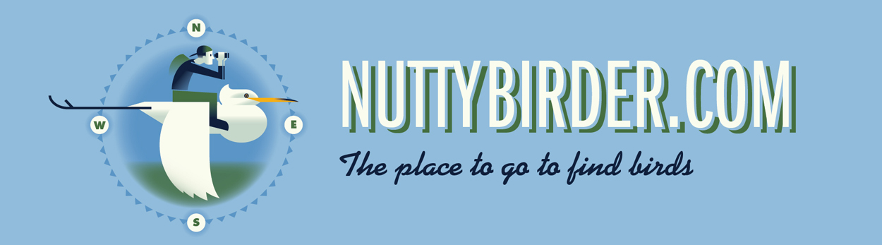 Nutty Birder