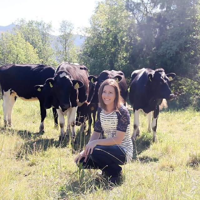 Dairy cattle grass woman near cows