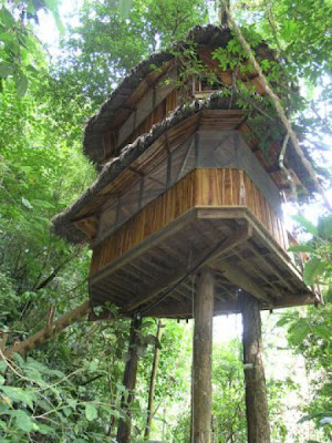 Incredible Tree House Community in Costa Rica