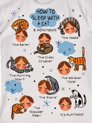 how to get cat to sleep through night