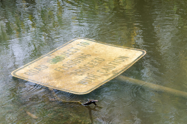 flooding warning sign lying in water