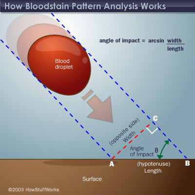 blood splatter lab Dropped at the scene: blood spatter analysis  the complete forensics with vernier lab manual includes 14 labs and essential teacher information.