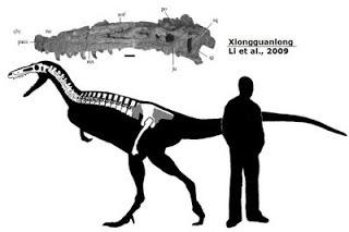 Xiongguanlong skeleton