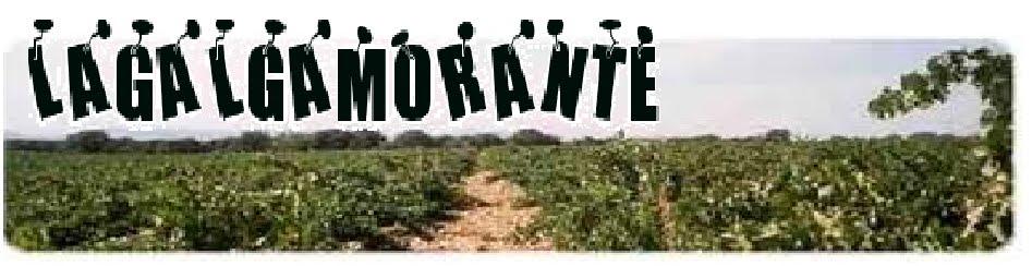 lagalgamorante
