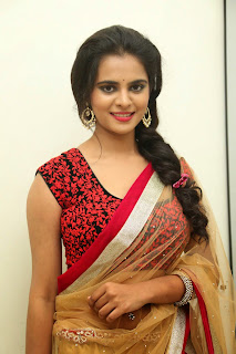 Actress Manasa Picture Gallery in Saree at Rowdy Fellow Movie Audio Launch  011.jpg