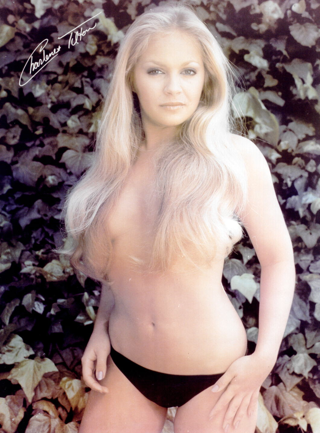 charlene tilton topless