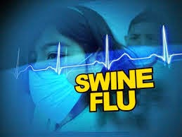 swine flu, pigs flu,