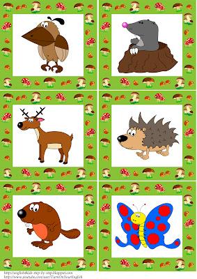 forest animals flashcards 2