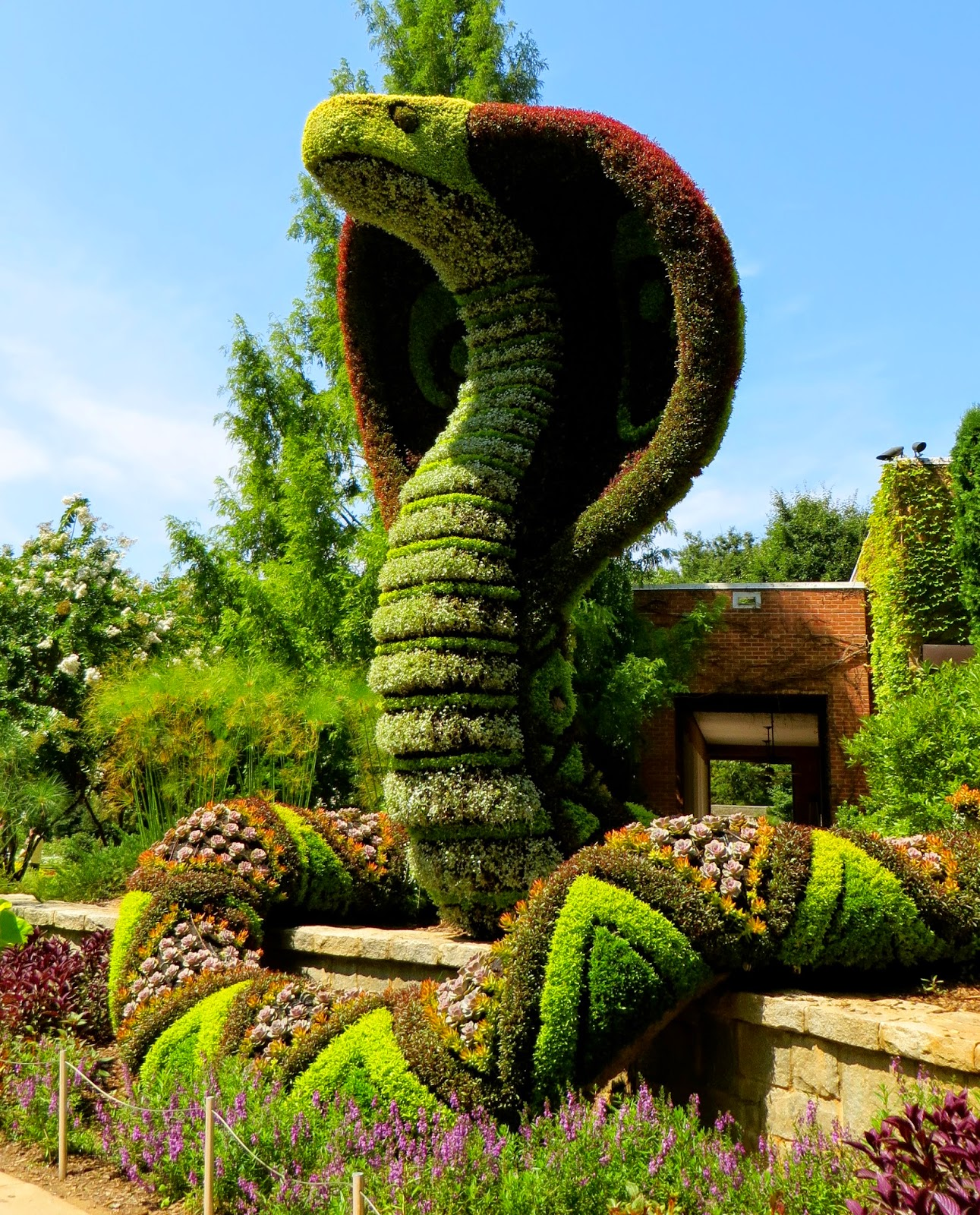Atlanta Botanical Garden Storza Woods: A Curious Gardener: Atlanta Botanical Garden