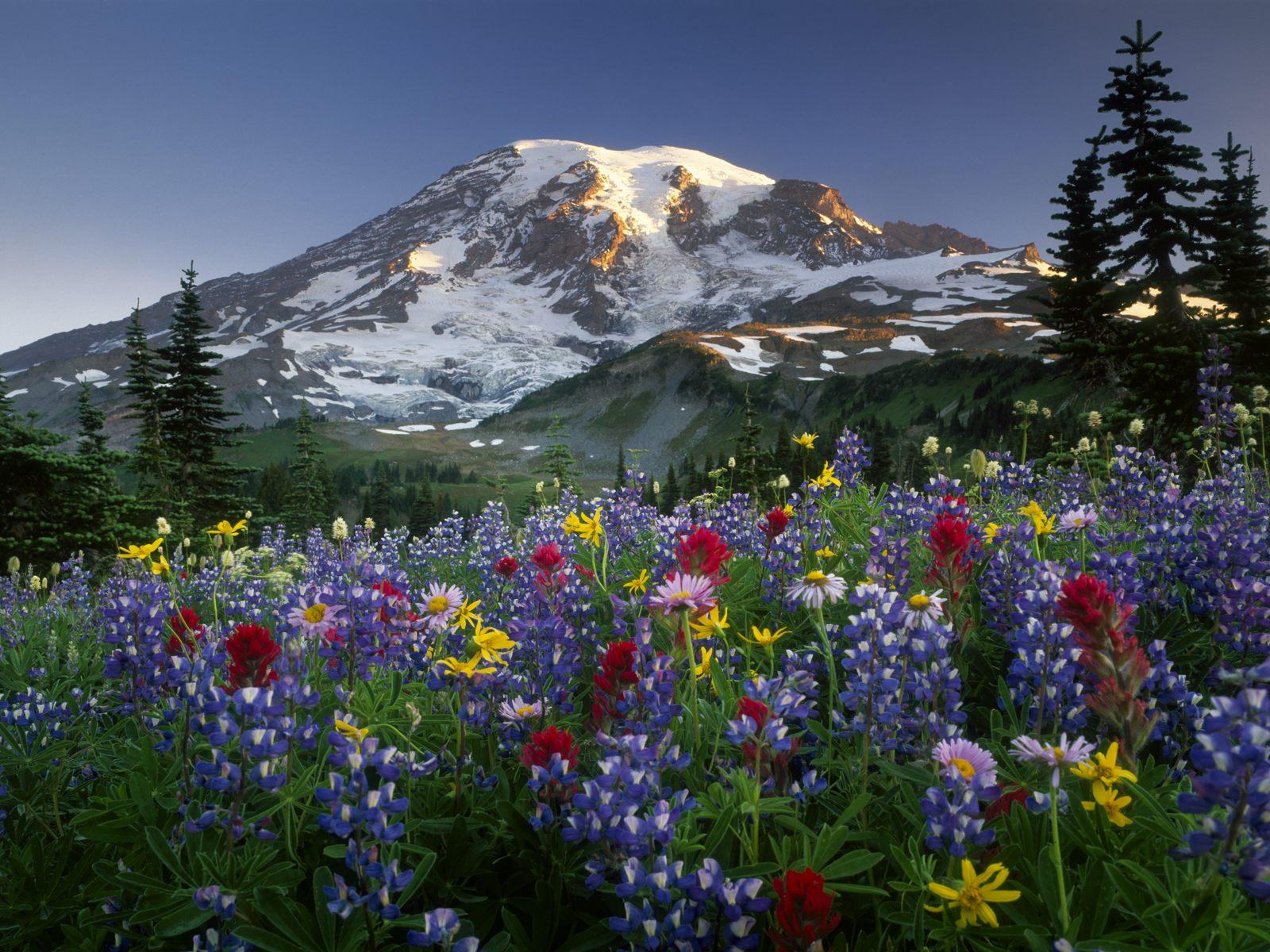 Choosing photos nueva serie de paisajes naturales 10 - Imagenes de paisajes ...