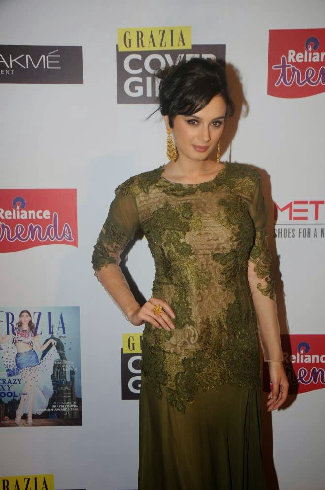 evelyn sharma latest hot photos