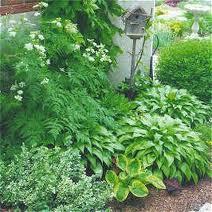 การจัดสวนในบ้าน แบบธรรมชาติ อย่างพอเพียง Home and Garden