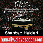 http://www.nohaypk.com/2015/10/shahbaz-haideri-nohay-2016.html