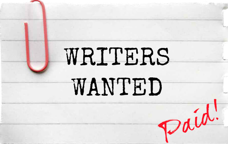 Essay writer needed