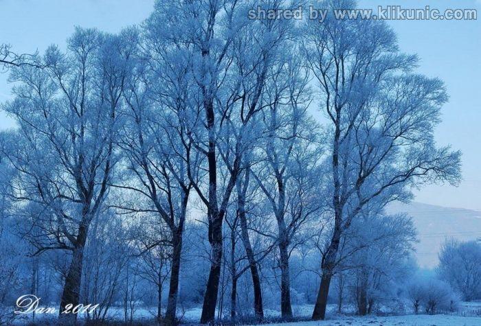 http://2.bp.blogspot.com/-VHNgw_dV7n8/TXiD4pvhKiI/AAAAAAAAQlg/EgEiKWWFCDE/s1600/winter_37.jpg