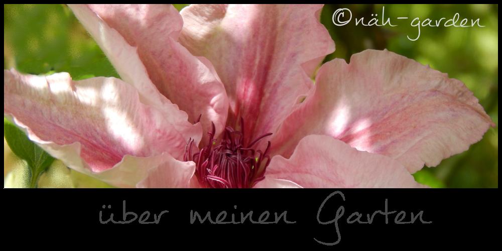 über meinen Garten
