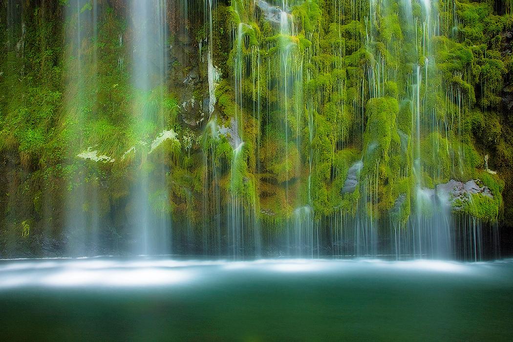 free beautiful nature green - photo #25