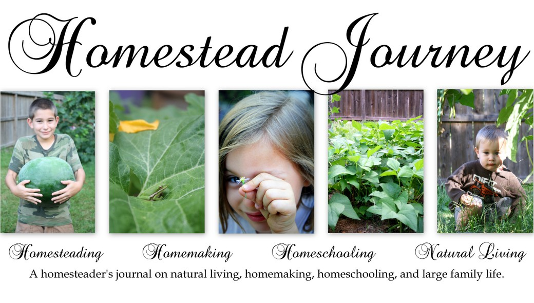 Homestead Journey