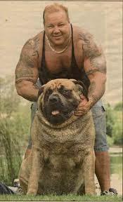 World's-Biggest-Dog-Pics-5