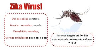 Zika Vírus e a Microcefalia - Explicações sobre a doença, como evitar e tratamento - Divulgação