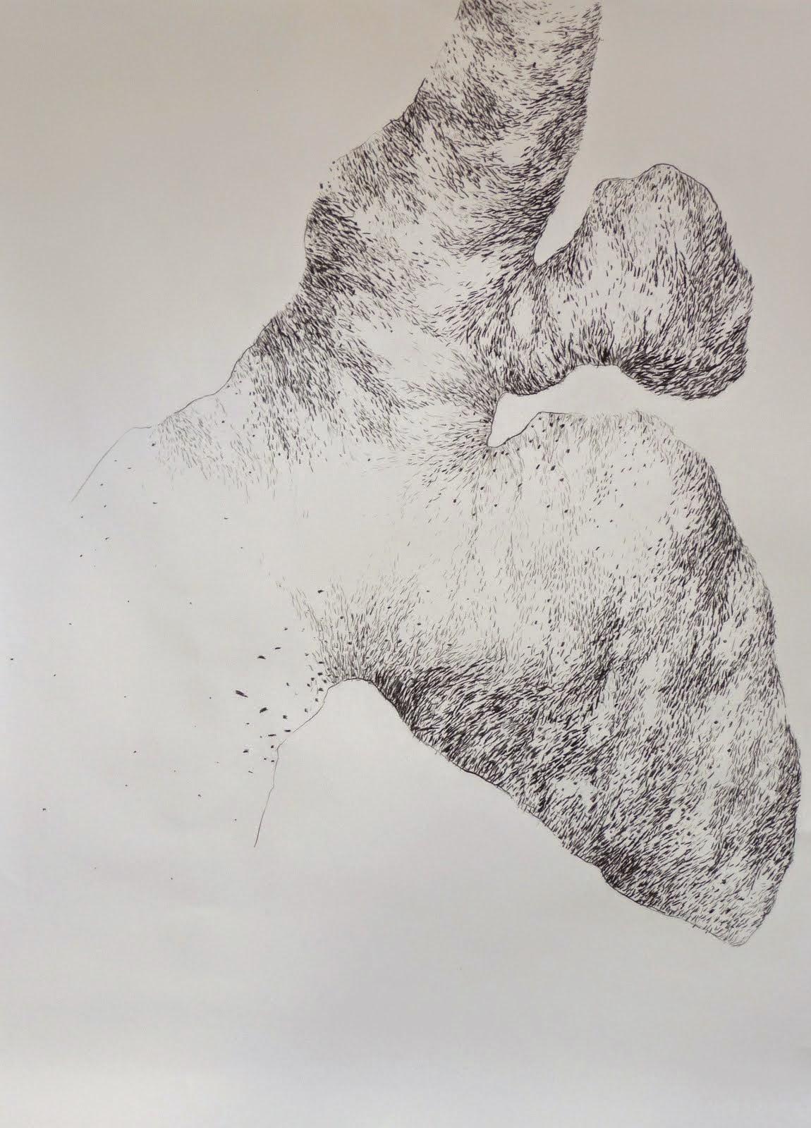 'Lysistrata', fusain/papier 170x150 2014