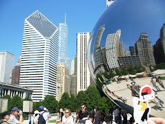 El catganer a Chicago.