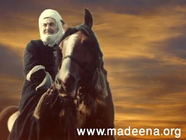 شيخُ مشايخ الطريقة النقشبنديّة المُجدّدية بالعالم الإسلامي