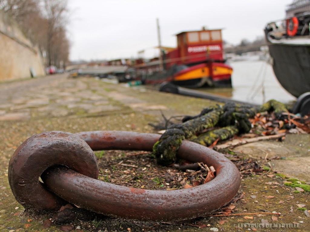 Fond d'écran #5 de FÉVRIER 2014, avec et sans le calendrier du mois - Quai de Seine (photo janv. 2014)