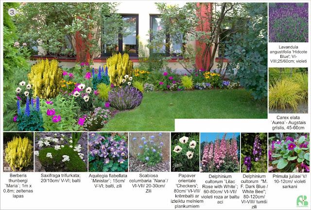 Ēdenes dārzs Tavā dārzā