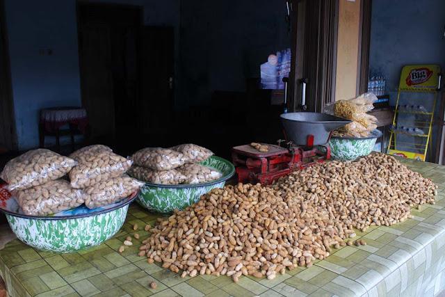 kacang pelem gurih