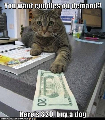Cat with 20 dollar bill. You want cuddles on demand? Here's $20, buy a dog.