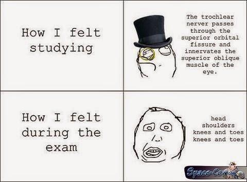 funny comics exam picture