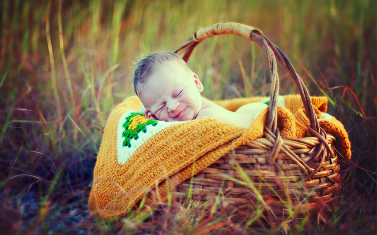 http://2.bp.blogspot.com/-VJg0qnwL_ec/UOvygkfj6qI/AAAAAAAAIkM/7XNoaGFxiBE/s1600/Cute%20Smiley%20Sleeping%20Baby%20In%20Basket%20HD%20Wallpaper-1440x900-cutelittlebabies.blogspot.com.jpg