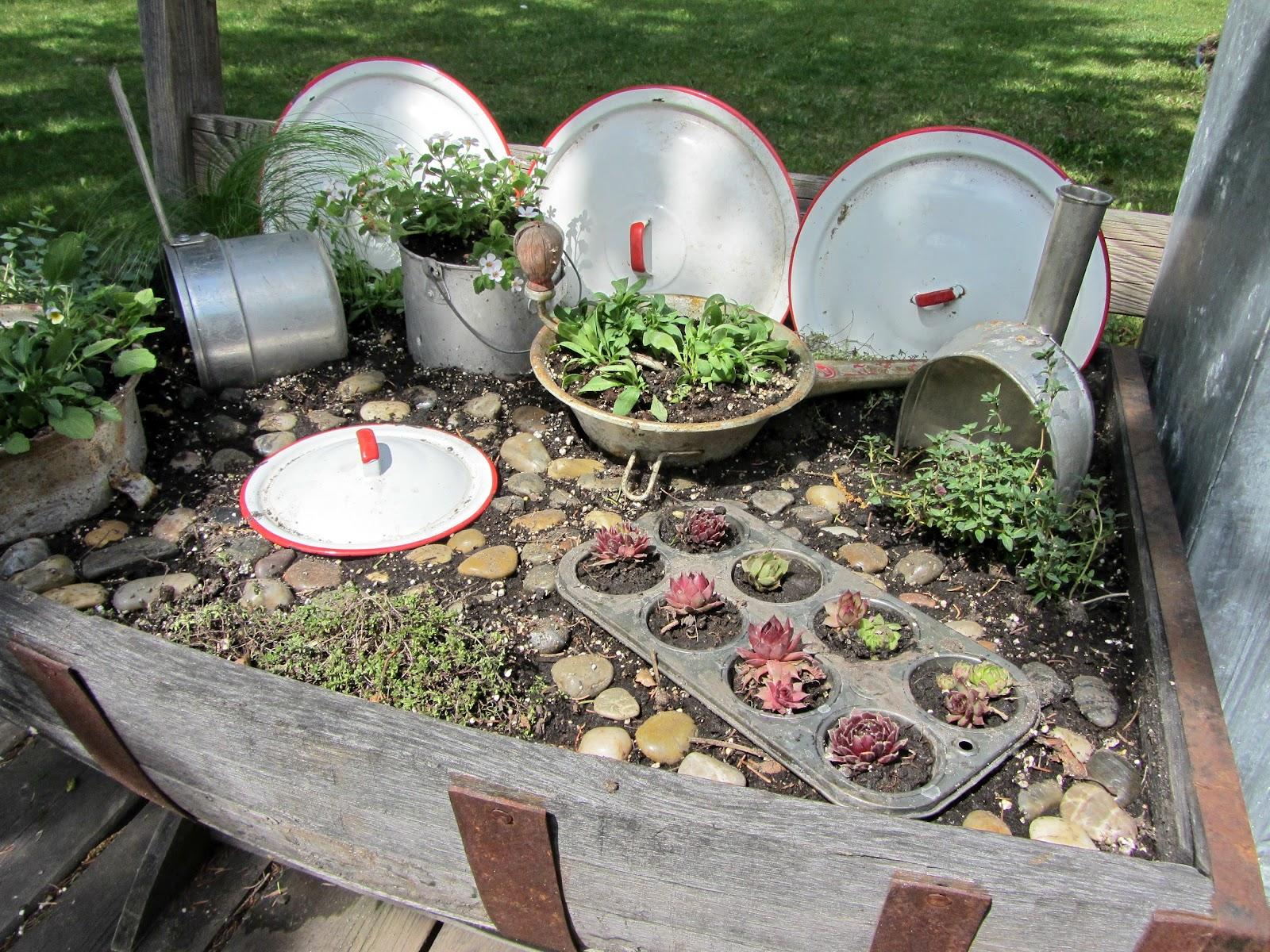 Kitchen fairy garden organized clutter for Creating a kitchen garden