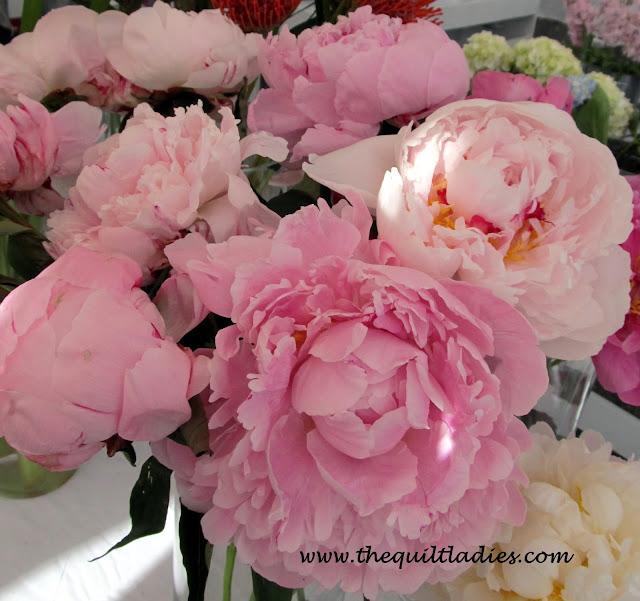 Spring in Pink by Beth Ann Strub