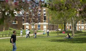 Pegge Scholarship for MSc Evolutionary and Adaptive Systems, University of Sussex, UK