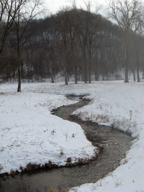 Minnesota driftless fly fishing trip report january for Trout fishing mn