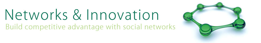 Networks and Innovation