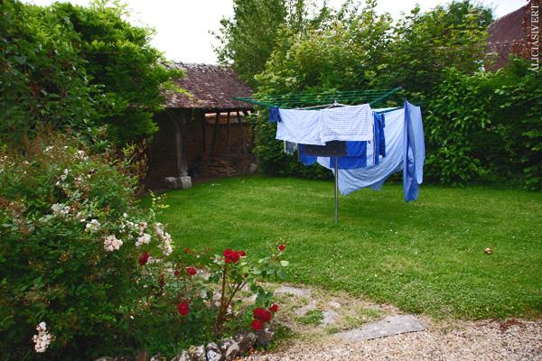 aliciasivert, alicia sivertsson, frankrike, france, normandy, normandie, garden, trädgård, la saussaye