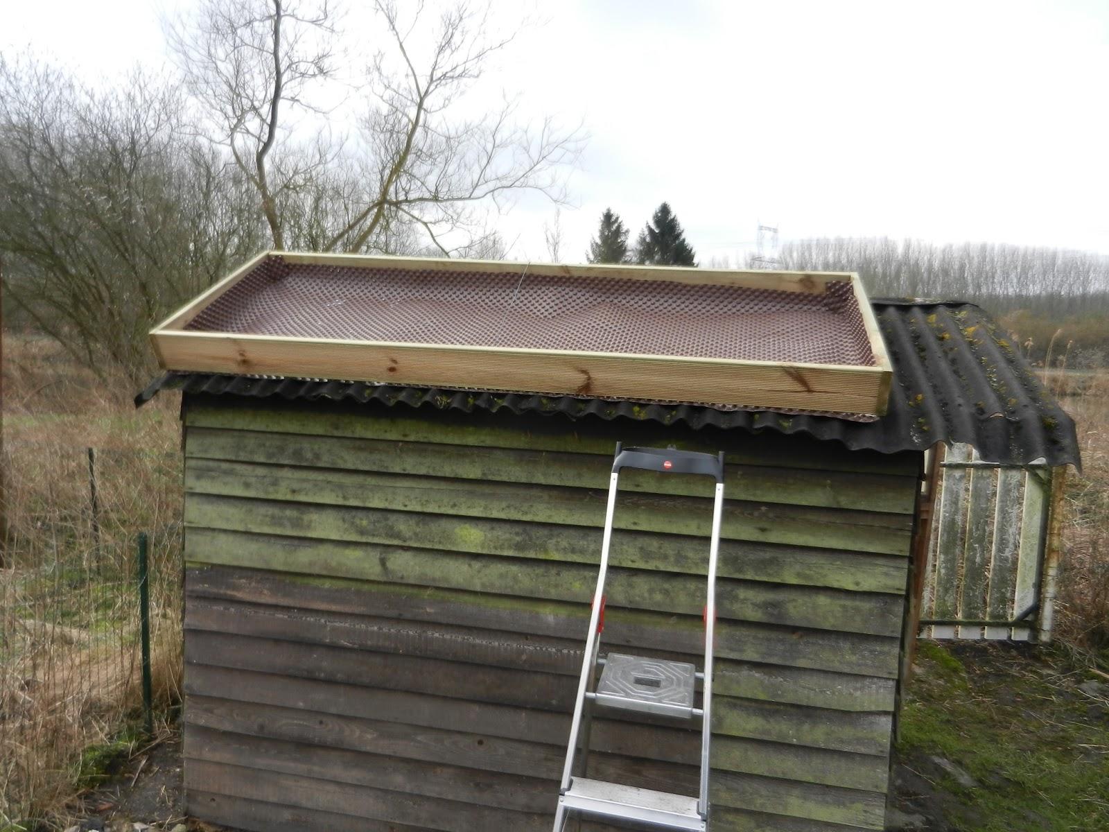 Mon toit v g tal beno t br milts - Cadre vegetal jardiland ...