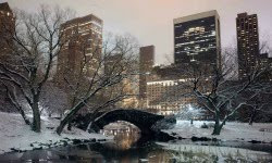 Central Park Best