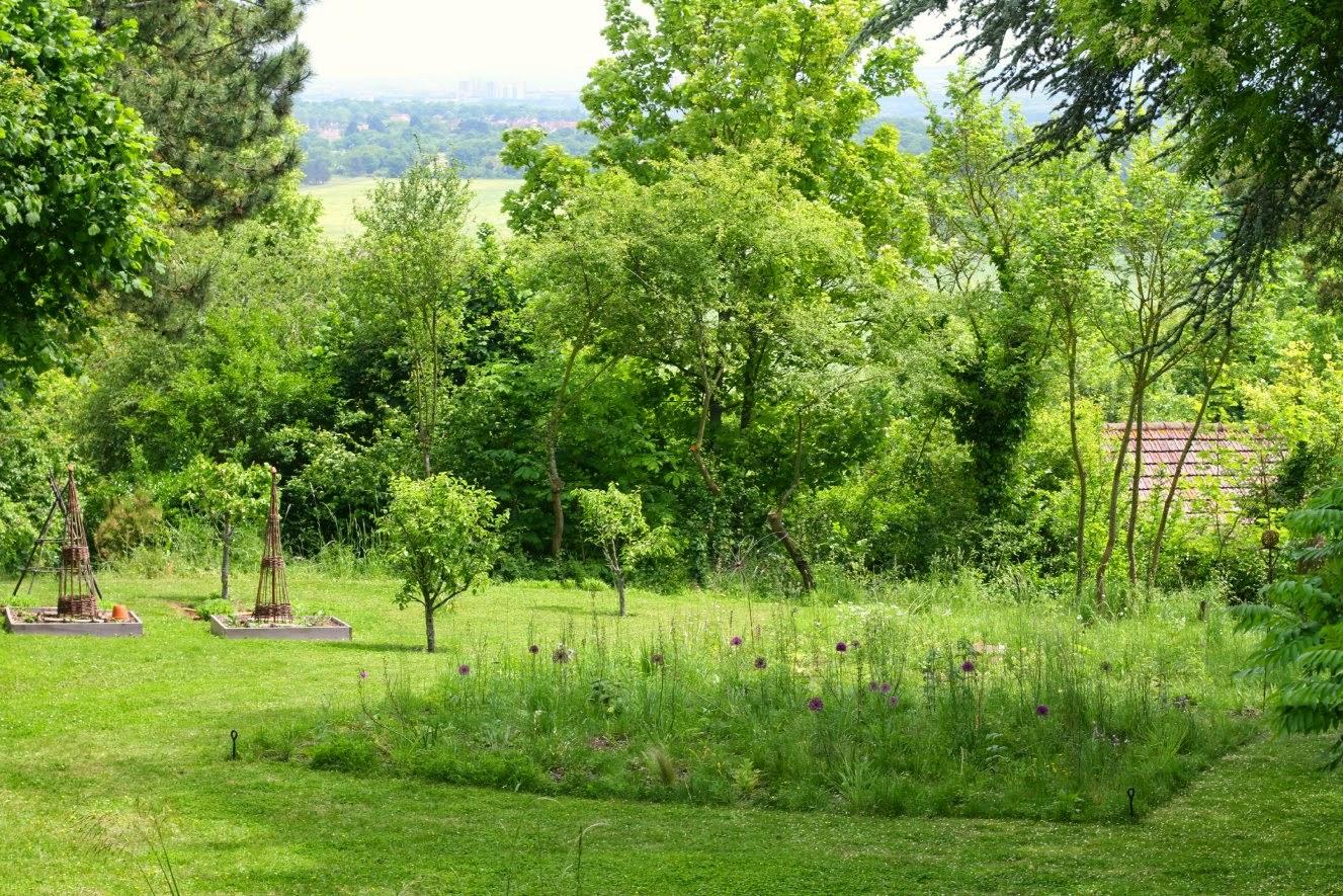 Le jardin des poussins mai 2015 for Jardin mai 2015