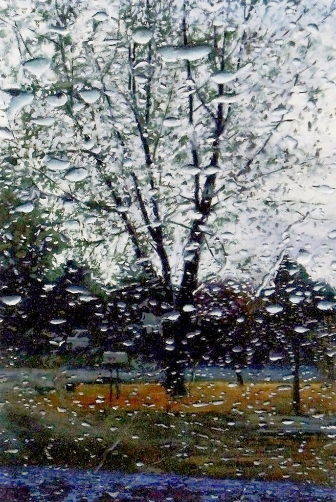 paisajes-a-traves-de-vidrios