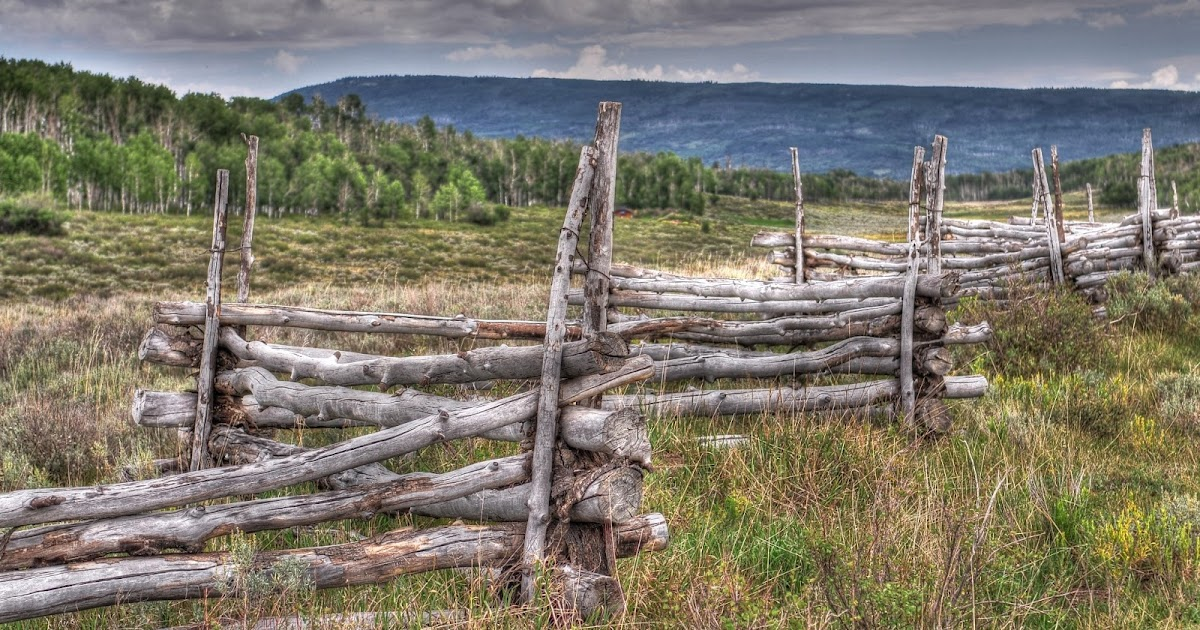 Nikon sniper zig zag fences of colorado