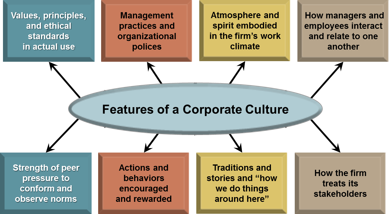 how are the values expectations and Our culture and values our core values are patient focus, integrity, respect for people and transparency we expect our employees to share our values, to act.