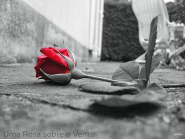 Uma Rosa sobre o Vento