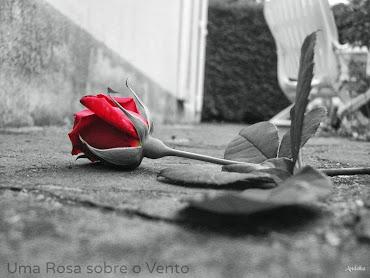 Uma Rosa sobre o Vento