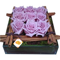 Rosas Lilás Canela | rebeca Flores